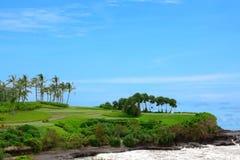 Tropische Ansicht. Exotischer Hintergrund von Meer und von Palme stockfoto