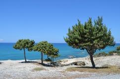 Tropische Ansicht in Griechenland Stockbild