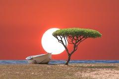 Tropische Bäume und Boot der Küste im Abendhimmel mit sunse Stockbild