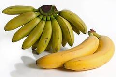 Tropische Bananen Stockfoto