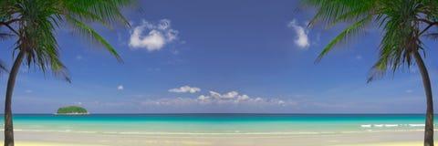 Tropische banner royalty-vrije stock foto's
