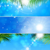 Tropische Bannerreeks Stock Foto