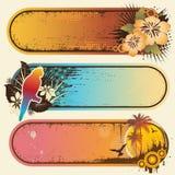 Tropische Banners vector illustratie