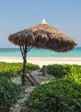 Tropische Bech op Havelock-Eiland Royalty-vrije Stock Foto