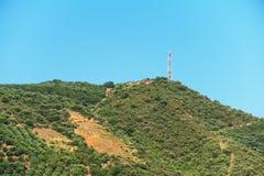 Tropische bergheuvel stock foto's
