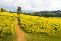 Tropische Bergketen, Thailand Stock Foto's