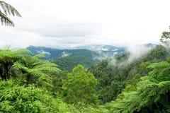 Tropische bergketenmening Weergeven van het Bewegen van Wolken en Mist over Titiwangsa-bergketen Weergeven van Hoge Vochtigheidsw royalty-vrije stock fotografie