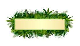 Tropische Betriebshintergrund Rechteckblumenrahmen mit Raum für Text im Konzeptbambus Stockbilder