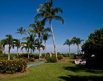 Tropische Binnenplaats Stock Foto's