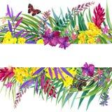 Tropische Blätter, Blumen und Schmetterling lizenzfreie abbildung