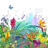 Tropische Blätter und Blumenhintergrund stock abbildung