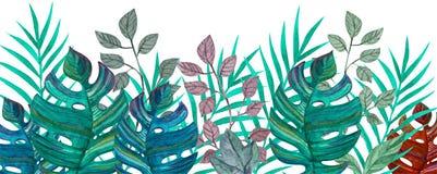 Tropische Bladeren De tekening van de waterverf Groene Kleur vector illustratie