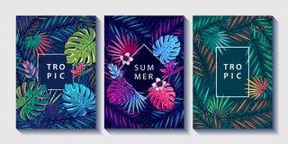 Tropische bladeren en bloemen geplaatste ontwerpaffiches stock illustratie