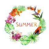 Tropische bladeren, exotische vogels, orchideebloemen Het kan voor het verfraaien van huwelijksuitnodigingen, groetkaarten en dec royalty-vrije illustratie