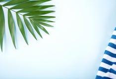 Tropische bladeren met gestreepte strandhanddoek op bluuachtergrond Minimaal concept Vlak leg De ruimte van het exemplaar royalty-vrije stock afbeelding
