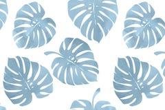Tropische bladeren, monsterapatroon Royalty-vrije Stock Foto