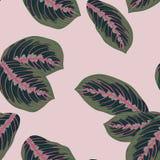 Tropische bladeren, naadloze vector bloemen het patroonachtergrond van wildernisbladeren vector illustratie