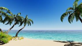 Tropische blaue Seepalmen Stockfoto