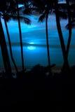 Tropische blauwe hemel Stock Foto's