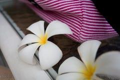 Tropische Bloem Royalty-vrije Stock Afbeeldingen