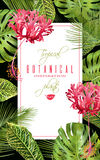 Tropische bloem verticale banner Stock Fotografie