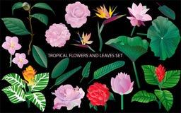 Tropische bloemen en bladerenillustratie op zwarte royalty-vrije stock afbeelding