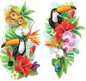 Tropische bloemen en toekan Stock Foto