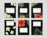 Tropische bloemenmalplaatjes met hand getrokken bossen royalty-vrije illustratie