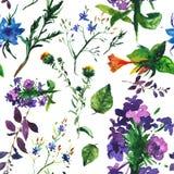 Tropische Blumen und Blätter Muster nahtlos Lizenzfreie Stockfotos