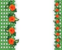 Tropische Blumen und Gitter Ränder Stockfotografie