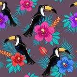 Tropische Blumen und Tukanmuster lizenzfreies stockfoto