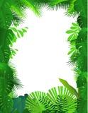 Tropische bosachtergrond vector illustratie
