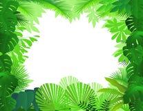 Tropische bosachtergrond royalty-vrije illustratie