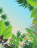 Tropische bosachtergrond Stock Foto
