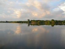 Tropische boshorizon op de rivier van Amazonië stock foto
