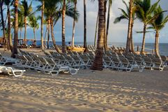 Tropische bräunende Stühle auf dem Strand Stockfoto