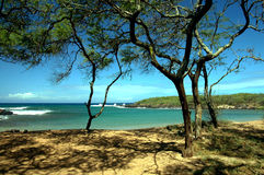 Tropische Bucht lizenzfreie stockfotografie
