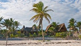 Tropische cabanas stock foto's