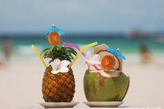 Tropische cocktails Stock Fotografie
