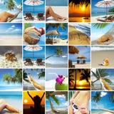 Tropische collage Stock Fotografie