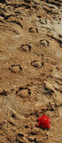 Tropische Creatieve Zandkunst met zandschildpadden die onderaan het strand lopen Stock Afbeelding
