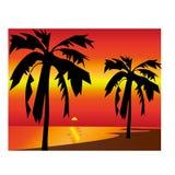 Tropische de palmeiland getrokken illustratie van Paradise royalty-vrije illustratie