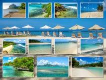 Tropische de strandencollage van Mauritius Stock Foto
