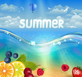 Tropische de zomerachtergrond vector illustratie
