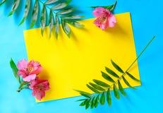 Tropische de zomerachtergrond stock foto