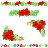 Tropische decoratie Royalty-vrije Stock Foto's