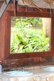 Tropische die installaties in een morror worden weerspiegeld Royalty-vrije Stock Afbeelding