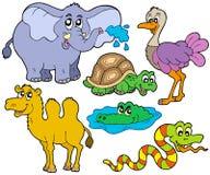 Tropische diereninzameling Stock Afbeelding