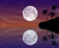 Tropische eilandnacht Royalty-vrije Stock Fotografie