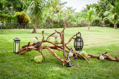 Tropische Einstellung an einem Garten Stockfotos